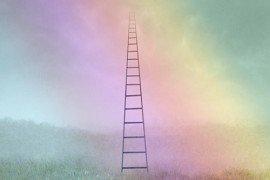 Neurons_Ladder_500