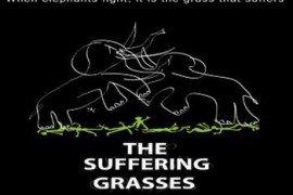 suffering-grasses