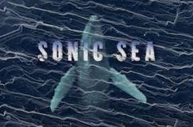 Sonic Sea: Sound, Song and Survival