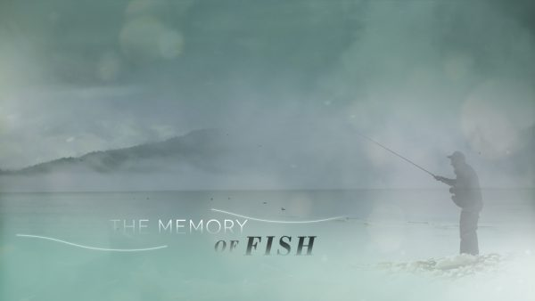 The Memory of Fish
