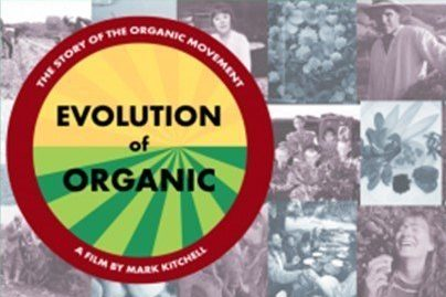 Evolution of Organic